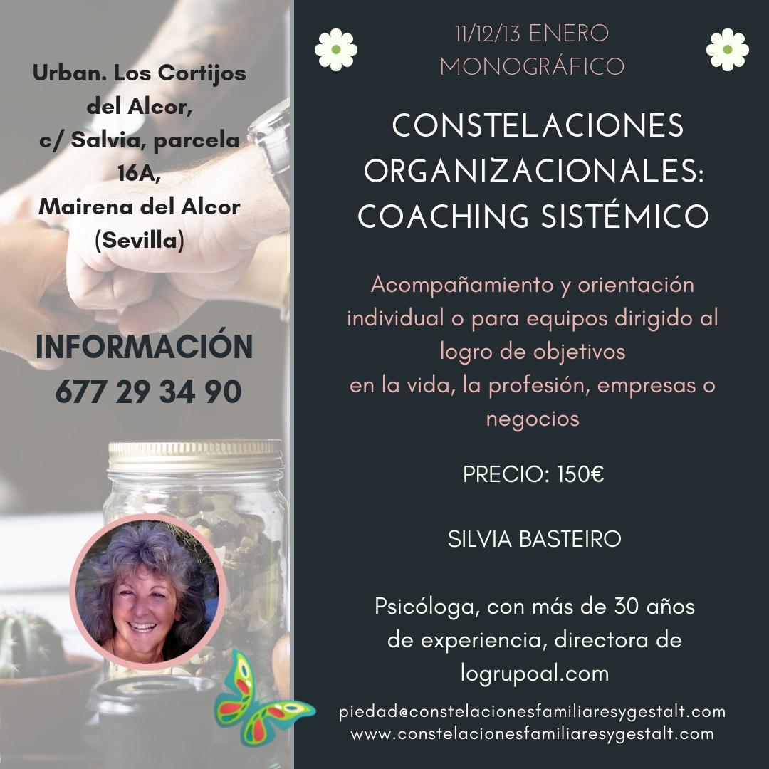 Módulo 4 del Nivel 2 de la Formación en Constelaciones Familiares (Sevilla, del 11 al 13 de enero)